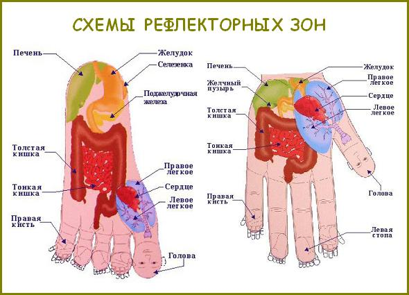 Массажный Шарик Су Джок Инструкция В Картинках img-1