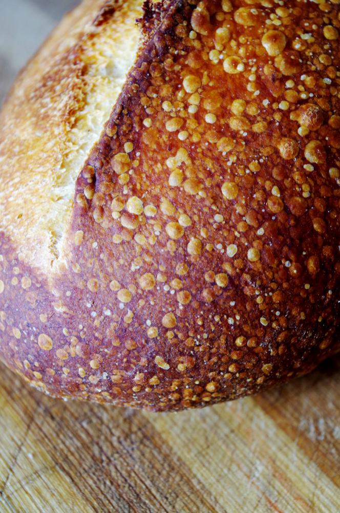 Поведение закваски летом и хлеб из нее