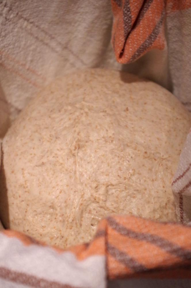 Секреты закваски Sekowa и пышный хлеб