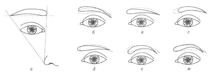 Форма бровей (на рисунке)