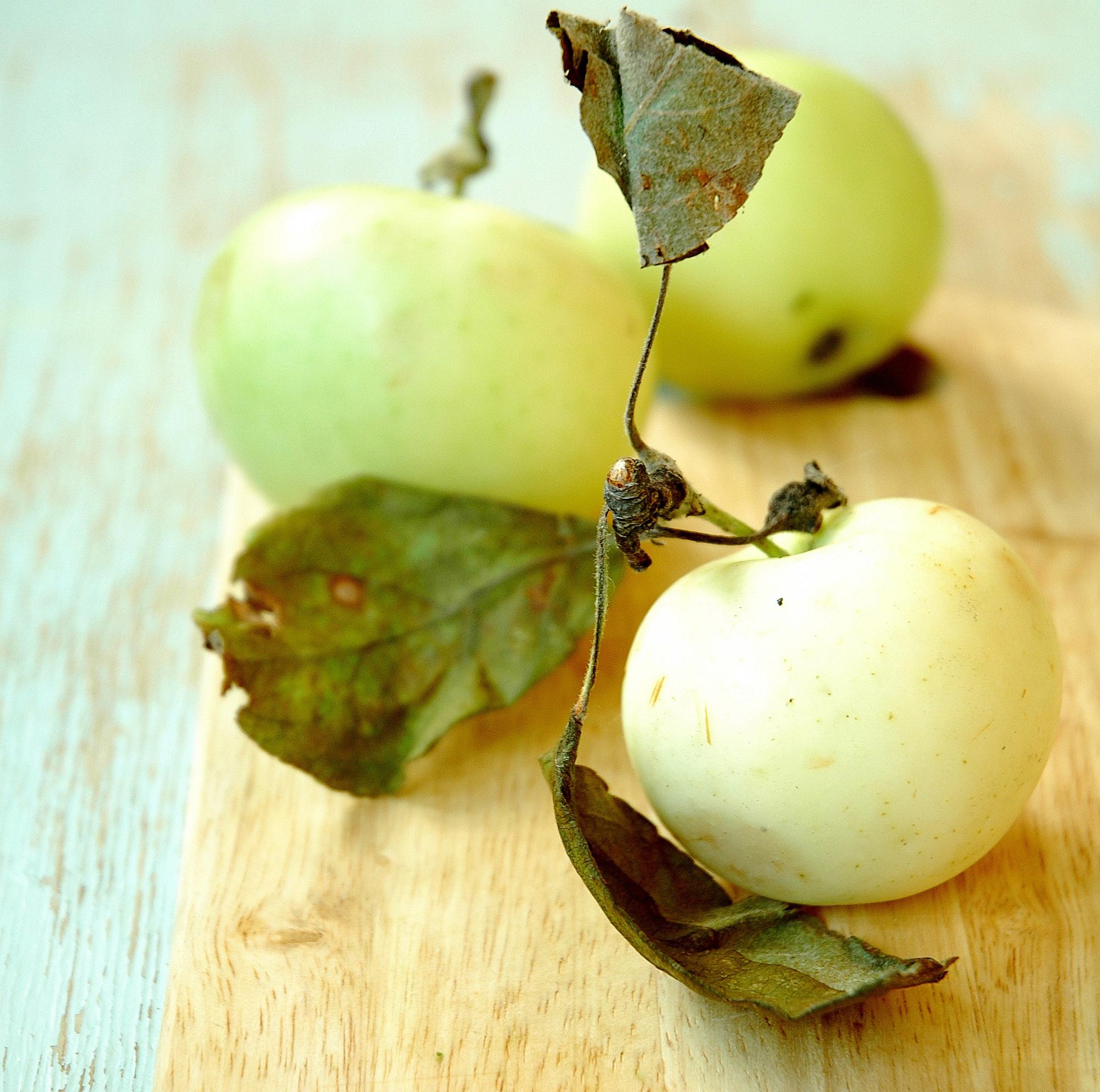 Делаем домашние дрожжи из фруктов, ягод, овощей, зелени с грядки