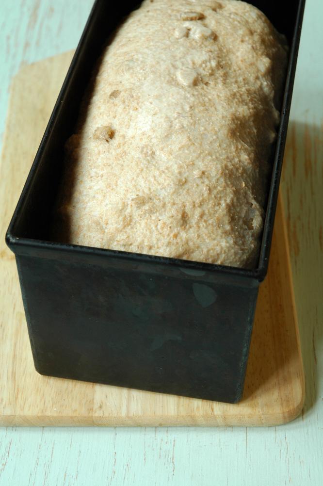 Тесто ночной расстойки в холодильнике