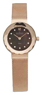 Skagen 456SRR1 - женские наручные часы из коллекции MeshSkagen<br><br><br>Бренд: Skagen<br>Модель: Skagen 456SRR1<br>Артикул: 456SRR1<br>Вариант артикула: None<br>Коллекция: Mesh<br>Подколлекция: None<br>Страна: Дания<br>Пол: женские<br>Тип механизма: кварцевые<br>Механизм: None<br>Количество камней: None<br>Автоподзавод: None<br>Источник энергии: от батарейки<br>Срок службы элемента питания: None<br>Дисплей: стрелки<br>Цифры: арабские<br>Водозащита: WR 30<br>Противоударные: None<br>Материал корпуса: нерж. сталь<br>Материал браслета: нерж. сталь<br>Материал безеля: None<br>Стекло: минеральное<br>Антибликовое покрытие: None<br>Цвет корпуса: None<br>Цвет браслета: None<br>Цвет циферблата: None<br>Цвет безеля: None<br>Размеры: 25x5.5 мм<br>Диаметр: None<br>Диаметр корпуса: None<br>Толщина: None<br>Ширина ремешка: None<br>Вес: None<br>Спорт-функции: None<br>Подсветка: None<br>Вставка: None<br>Отображение даты: None<br>Хронограф: None<br>Таймер: None<br>Термометр: None<br>Хронометр: None<br>GPS: None<br>Радиосинхронизация: None<br>Барометр: None<br>Скелетон: None<br>Дополнительная информация: None<br>Дополнительные функции: None
