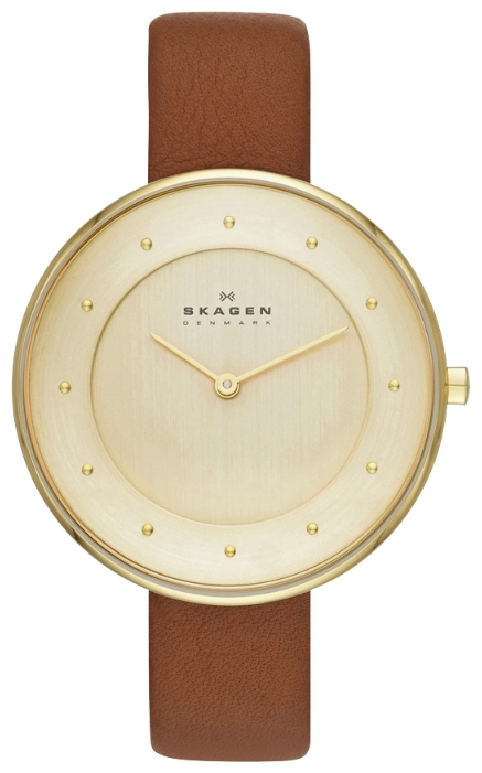 Skagen SKW2138 - женские наручные часы из коллекции LeatherSkagen<br><br><br>Бренд: Skagen<br>Модель: Skagen SKW2138<br>Артикул: SKW2138<br>Вариант артикула: None<br>Коллекция: Leather<br>Подколлекция: None<br>Страна: Дания<br>Пол: женские<br>Тип механизма: кварцевые<br>Механизм: None<br>Количество камней: None<br>Автоподзавод: None<br>Источник энергии: от батарейки<br>Срок службы элемента питания: None<br>Дисплей: стрелки<br>Цифры: отсутствуют<br>Водозащита: WR 30<br>Противоударные: None<br>Материал корпуса: нерж. сталь, полное покрытие корпуса<br>Материал браслета: кожа<br>Материал безеля: None<br>Стекло: минеральное<br>Антибликовое покрытие: None<br>Цвет корпуса: None<br>Цвет браслета: None<br>Цвет циферблата: None<br>Цвет безеля: None<br>Размеры: 38x38x5.5 мм<br>Диаметр: None<br>Диаметр корпуса: None<br>Толщина: None<br>Ширина ремешка: None<br>Вес: None<br>Спорт-функции: None<br>Подсветка: None<br>Вставка: None<br>Отображение даты: None<br>Хронограф: None<br>Таймер: None<br>Термометр: None<br>Хронометр: None<br>GPS: None<br>Радиосинхронизация: None<br>Барометр: None<br>Скелетон: None<br>Дополнительная информация: None<br>Дополнительные функции: None