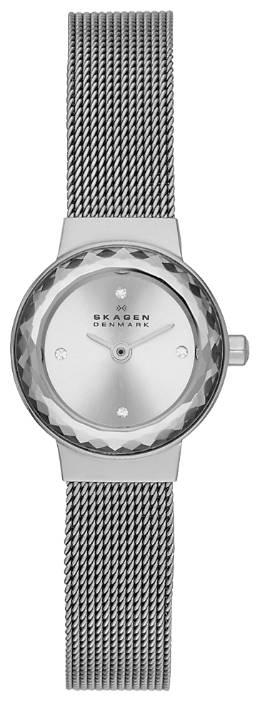 Skagen SKW2184 - женские наручные часы из коллекции MeshSkagen<br><br><br>Бренд: Skagen<br>Модель: Skagen SKW2184<br>Артикул: SKW2184<br>Вариант артикула: None<br>Коллекция: Mesh<br>Подколлекция: None<br>Страна: Дания<br>Пол: женские<br>Тип механизма: кварцевые<br>Механизм: None<br>Количество камней: None<br>Автоподзавод: None<br>Источник энергии: от батарейки<br>Срок службы элемента питания: None<br>Дисплей: стрелки<br>Цифры: отсутствуют<br>Водозащита: WR 30<br>Противоударные: None<br>Материал корпуса: нерж. сталь<br>Материал браслета: нерж. сталь<br>Материал безеля: None<br>Стекло: минеральное<br>Антибликовое покрытие: None<br>Цвет корпуса: None<br>Цвет браслета: None<br>Цвет циферблата: None<br>Цвет безеля: None<br>Размеры: 20x6.8 мм<br>Диаметр: None<br>Диаметр корпуса: None<br>Толщина: None<br>Ширина ремешка: None<br>Вес: None<br>Спорт-функции: None<br>Подсветка: None<br>Вставка: None<br>Отображение даты: None<br>Хронограф: None<br>Таймер: None<br>Термометр: None<br>Хронометр: None<br>GPS: None<br>Радиосинхронизация: None<br>Барометр: None<br>Скелетон: None<br>Дополнительная информация: None<br>Дополнительные функции: None