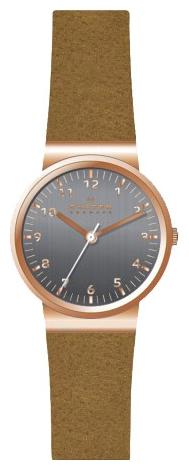 Skagen SKW2189 - женские наручные часы из коллекции LeatherSkagen<br><br><br>Бренд: Skagen<br>Модель: Skagen SKW2189<br>Артикул: SKW2189<br>Вариант артикула: None<br>Коллекция: Leather<br>Подколлекция: None<br>Страна: Дания<br>Пол: женские<br>Тип механизма: кварцевые<br>Механизм: None<br>Количество камней: None<br>Автоподзавод: None<br>Источник энергии: от батарейки<br>Срок службы элемента питания: None<br>Дисплей: стрелки<br>Цифры: арабские<br>Водозащита: WR 30<br>Противоударные: None<br>Материал корпуса: нерж. сталь, PVD покрытие: позолота (полное)<br>Материал браслета: кожа (не указан)<br>Материал безеля: None<br>Стекло: минеральное<br>Антибликовое покрытие: None<br>Цвет корпуса: None<br>Цвет браслета: None<br>Цвет циферблата: None<br>Цвет безеля: None<br>Размеры: None<br>Диаметр: None<br>Диаметр корпуса: None<br>Толщина: None<br>Ширина ремешка: None<br>Вес: None<br>Спорт-функции: None<br>Подсветка: None<br>Вставка: None<br>Отображение даты: None<br>Хронограф: None<br>Таймер: None<br>Термометр: None<br>Хронометр: None<br>GPS: None<br>Радиосинхронизация: None<br>Барометр: None<br>Скелетон: None<br>Дополнительная информация: None<br>Дополнительные функции: None