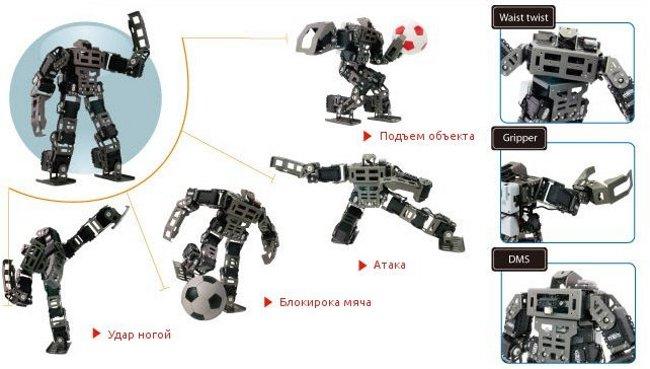 Примеры движение Bioloid GP