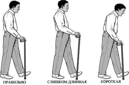 Палки для инвалидов как выбрать