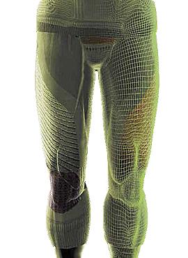Описание Combat Energizer X-Bionic