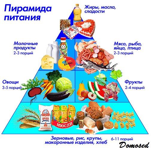 Здоровое питание как ключ к долголетию
