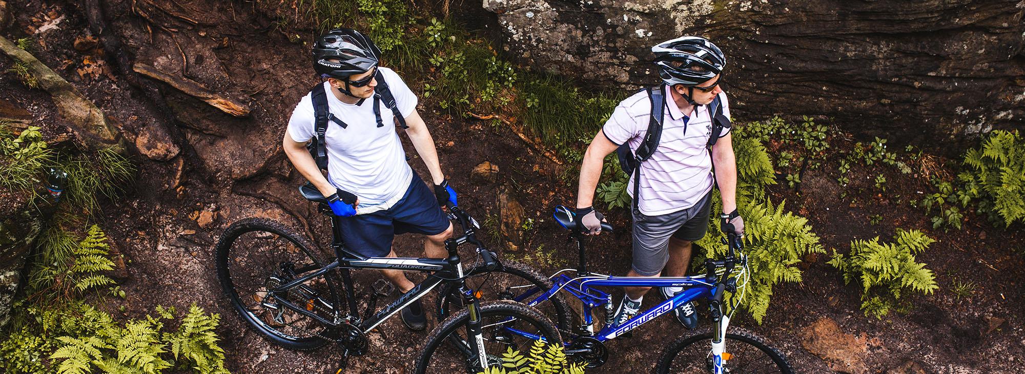 Купить велосипеды Forward