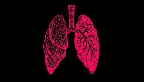 Большая часть веса уходит при похудении с выдыхаемым воздухом