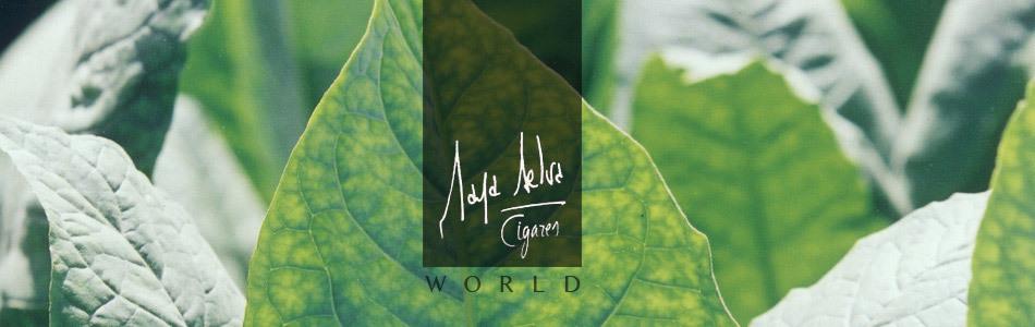Maya Selva