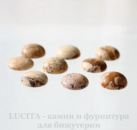 Кабошон круглый Яшма Пейзажная 12х5 мм ()
