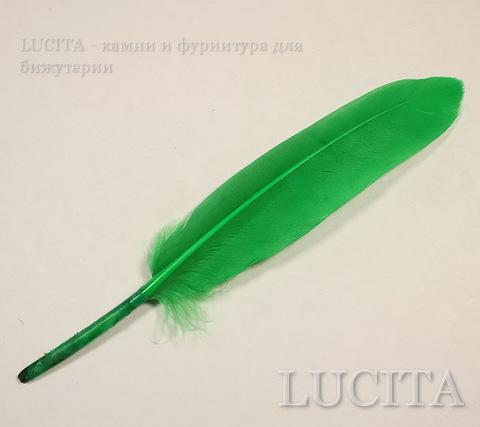 Перо декоративное (цвет- зеленый) 10-15 см , 10 шт ()