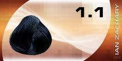 1.1 Иссиня-черный