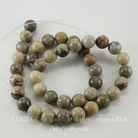 """Бусина Коралл """"Хризантема"""", шарик, цвет - серый с бежевым, 10 мм, нить"""