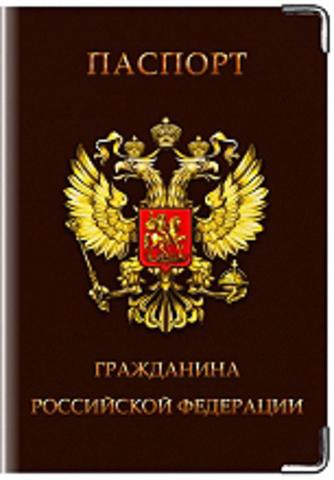 """Обложка для паспорта """"Гражданин РФ"""""""