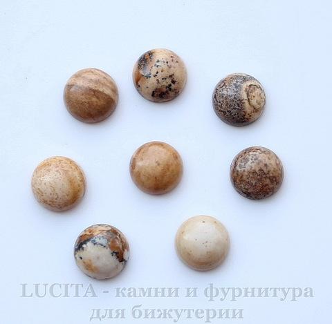 Кабошон круглый Яшма Пейзажная 8 мм ()