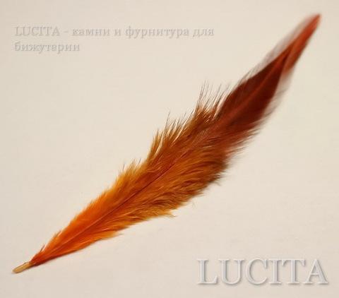 Перья декоративные (цвет- оранжевый) 7-11 см , 5гр ()