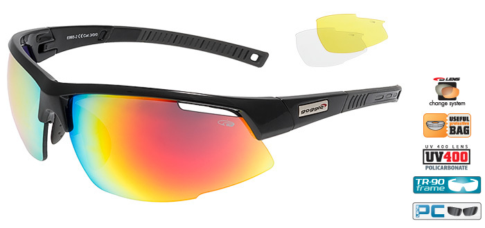 Спортивные очки goggle FALCON black/dark grey