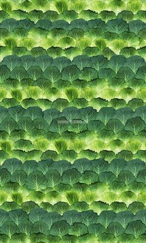 Фотообои (панно) Mr Perswall Daily Details P193001-4, интернет магазин Волео