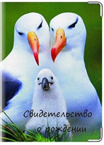 """Обложка для свидетельства о рождении """"Птицы"""""""