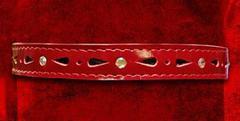 Секс Ошейник для девушки декоративный со стразами1.5см красный