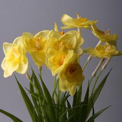 Букет нарциссов желтый, 147-2
