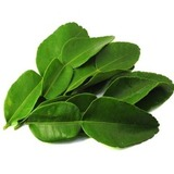 https://static12.insales.ru/images/products/1/2005/30549973/compact_lime_leaves.jpg