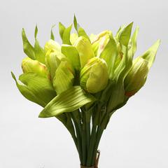 Букет тюльпанов зеленый из 9-ти шт., арт. 5568-1
