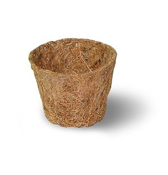 Coco pot d 7,5 cm