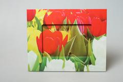 Фоторамка красные тюльпаны 17513