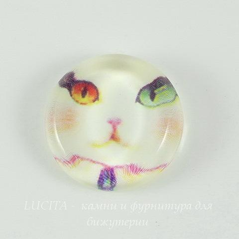 "Кабошон стеклянный  ""Кошка"" 22 мм"