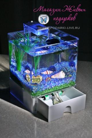 Мини аквариум куб 3 л с подсветкой №001