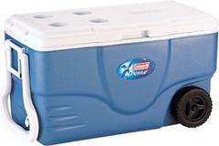 Термоконтейнер Coleman Xtreme Cooler 52 QT (серебристый)