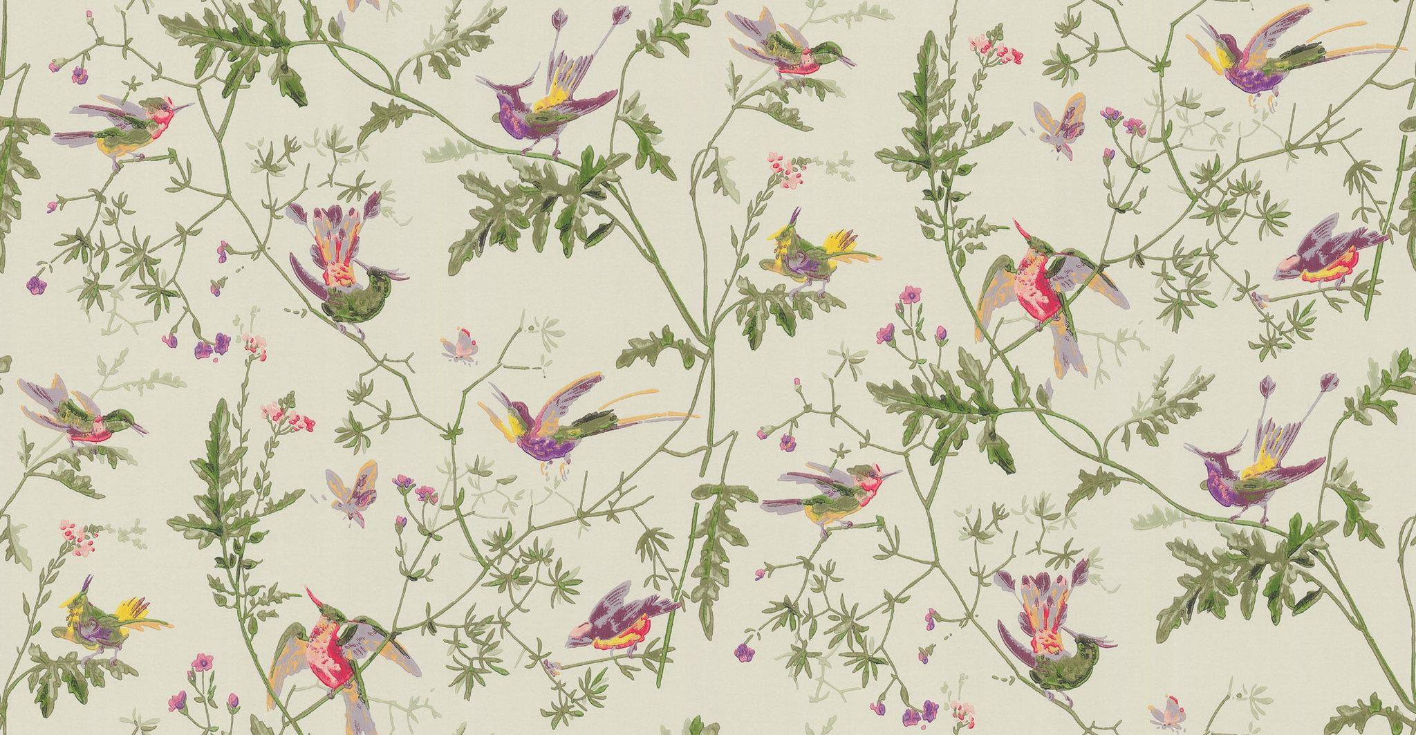Обои Cole & Son Collection of Flowers 62/1002, интернет магазин Волео