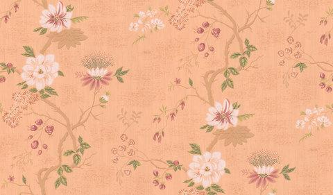 Обои Cole & Son Collection of Flowers 65/1001, интернет магазин Волео