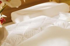 Пара элитных наволочек джерси для терапевтических подушек от Brinkhaus