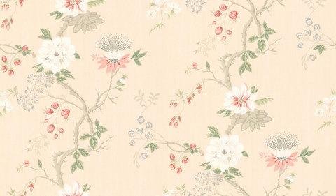 Обои Cole & Son Collection of Flowers 65/1005, интернет магазин Волео