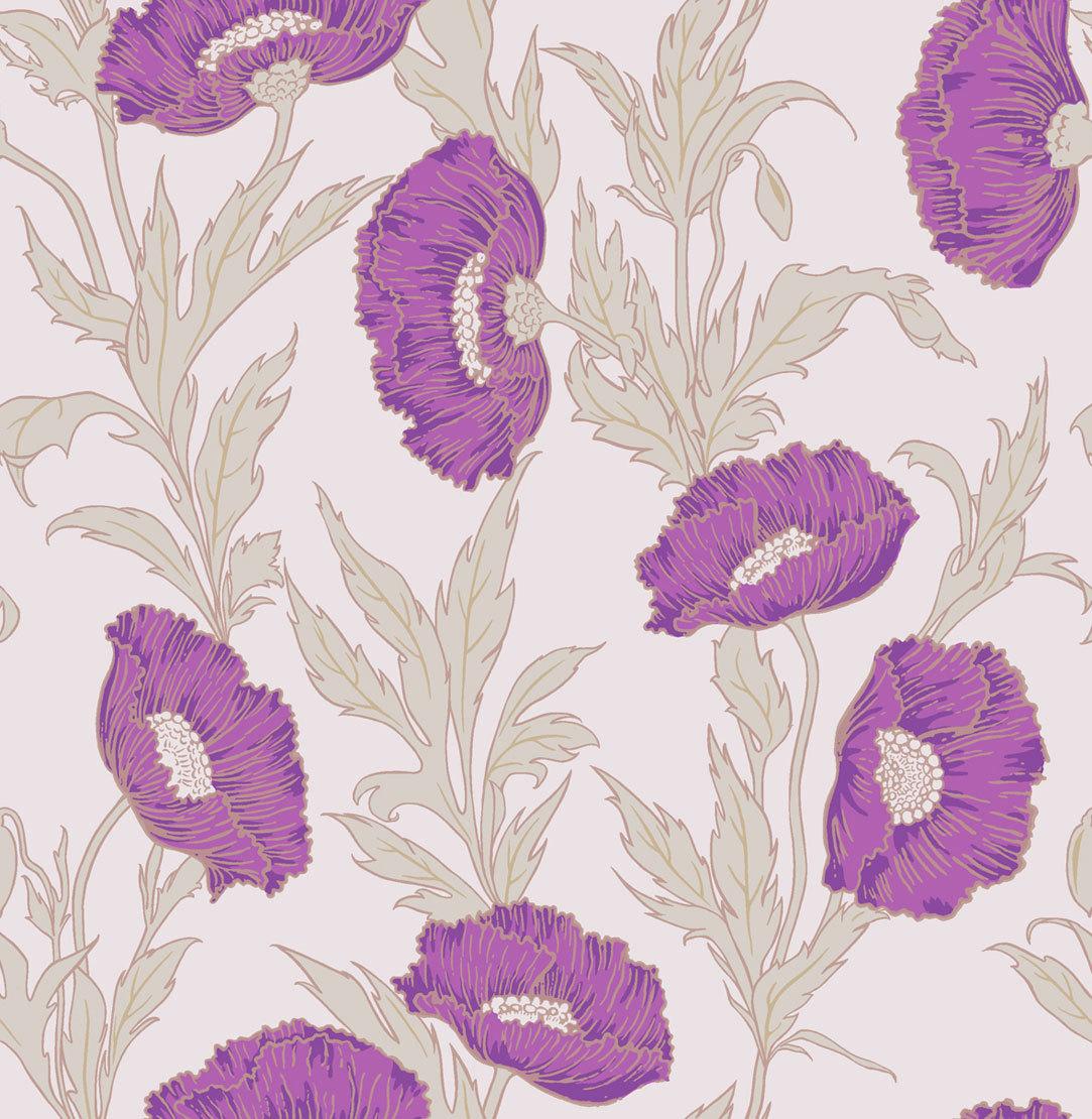 Обои Cole & Son Collection of Flowers 81/1002, интернет магазин Волео