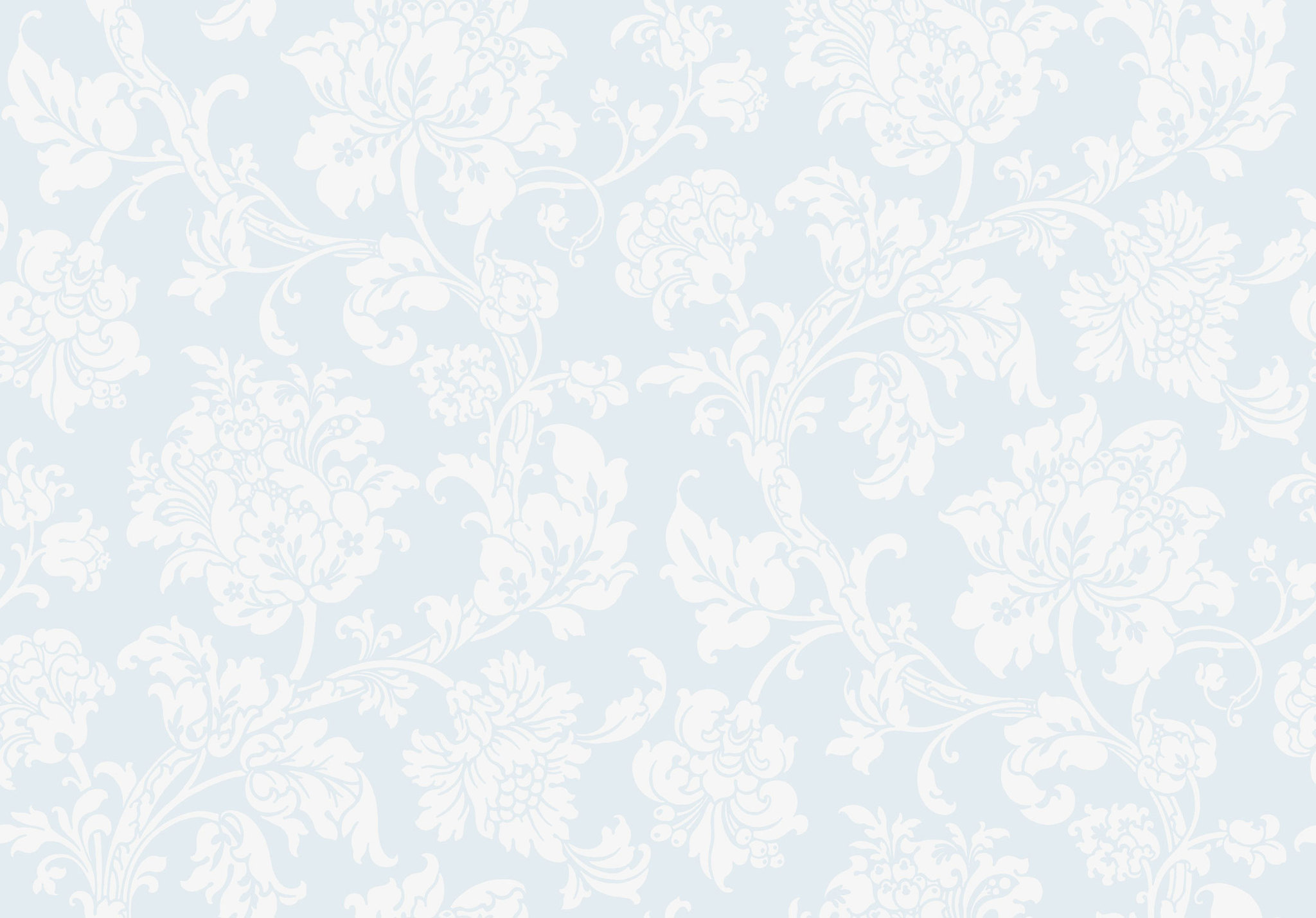 Обои Cole & Son Collection of Flowers 81/10041, интернет магазин Волео