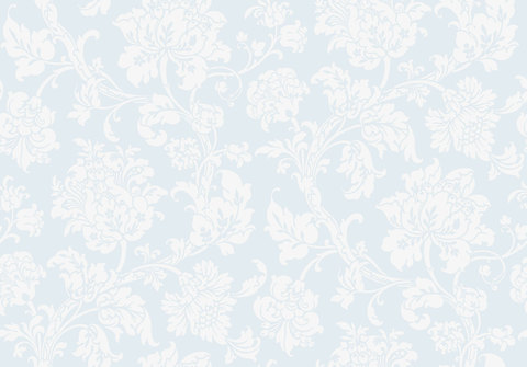 Обои Cole & Son Collection of Flowers 81/10041, интернет магазин Волео