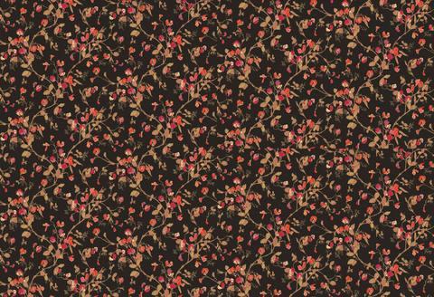 Обои Cole & Son Collection of Flowers 81/11046, интернет магазин Волео