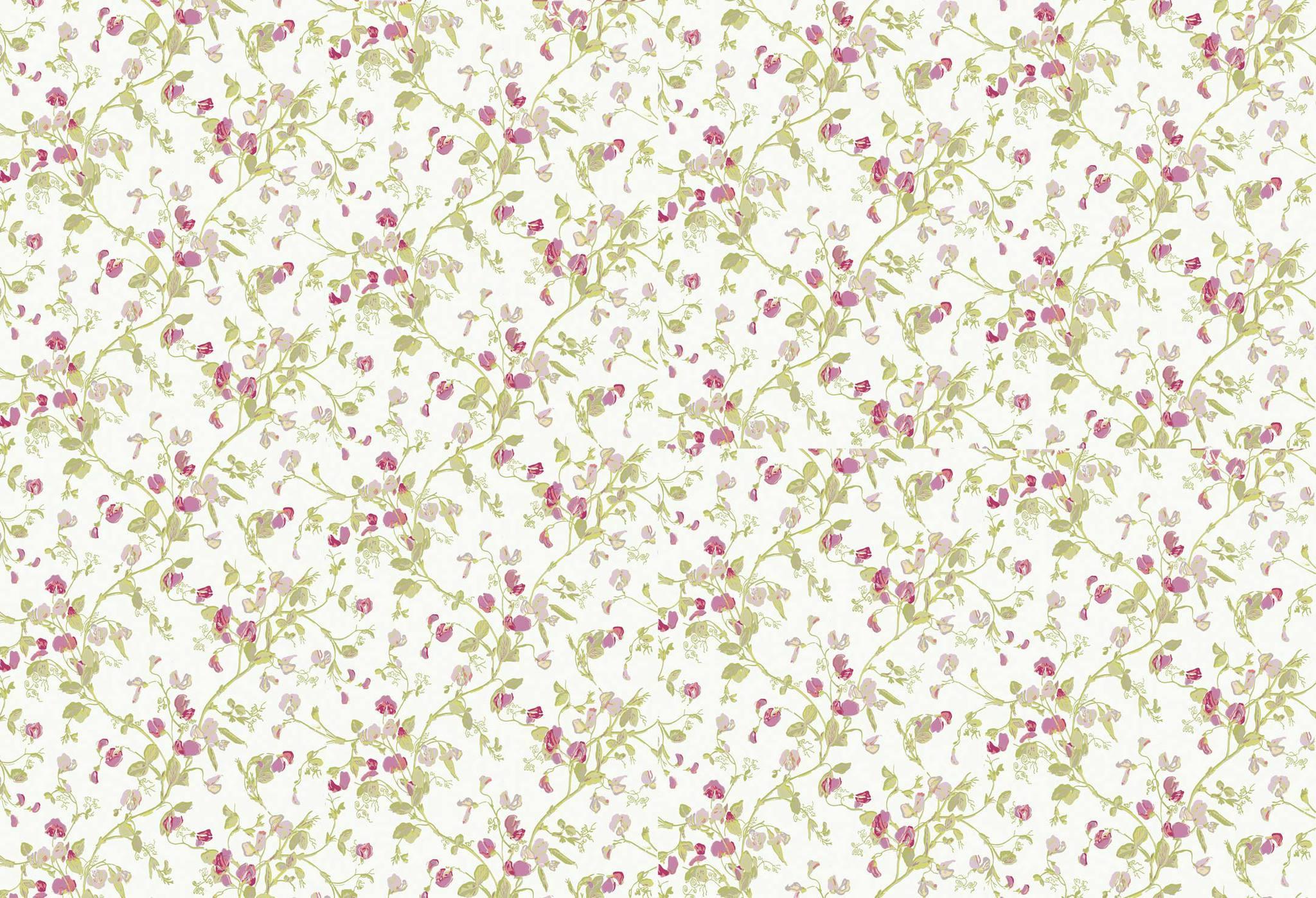 Обои Cole & Son Collection of Flowers 81/11048, интернет магазин Волео