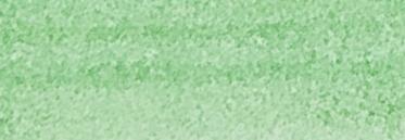 205 Краска Wash Зеленый
