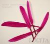 Перо декоративное (цвет- розовый) 10-15 см , 10 шт ()