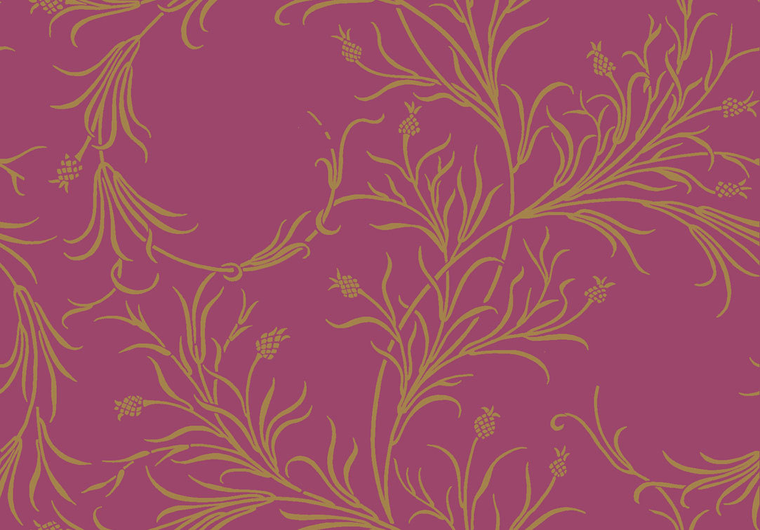 Обои Cole & Son Collection of Flowers 81/12052, интернет магазин Волео