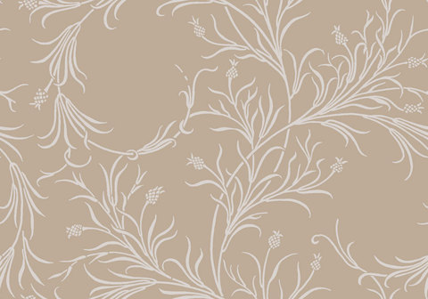 Обои Cole & Son Collection of Flowers 81/12054, интернет магазин Волео