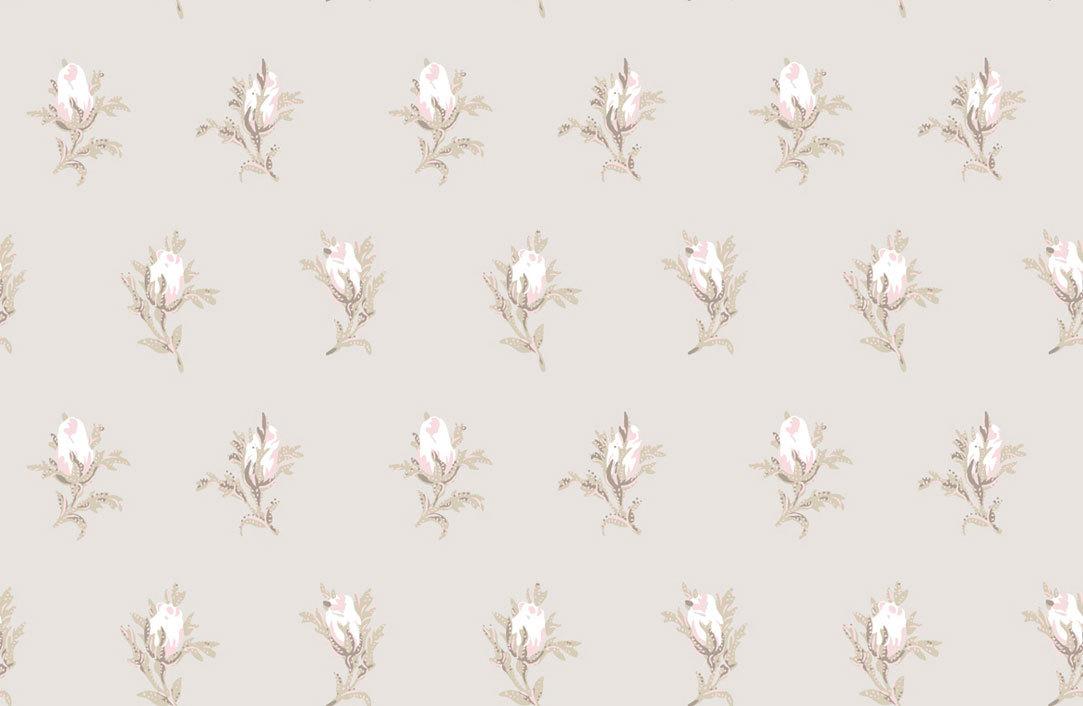 Обои Cole & Son Collection of Flowers 81/4015, интернет магазин Волео